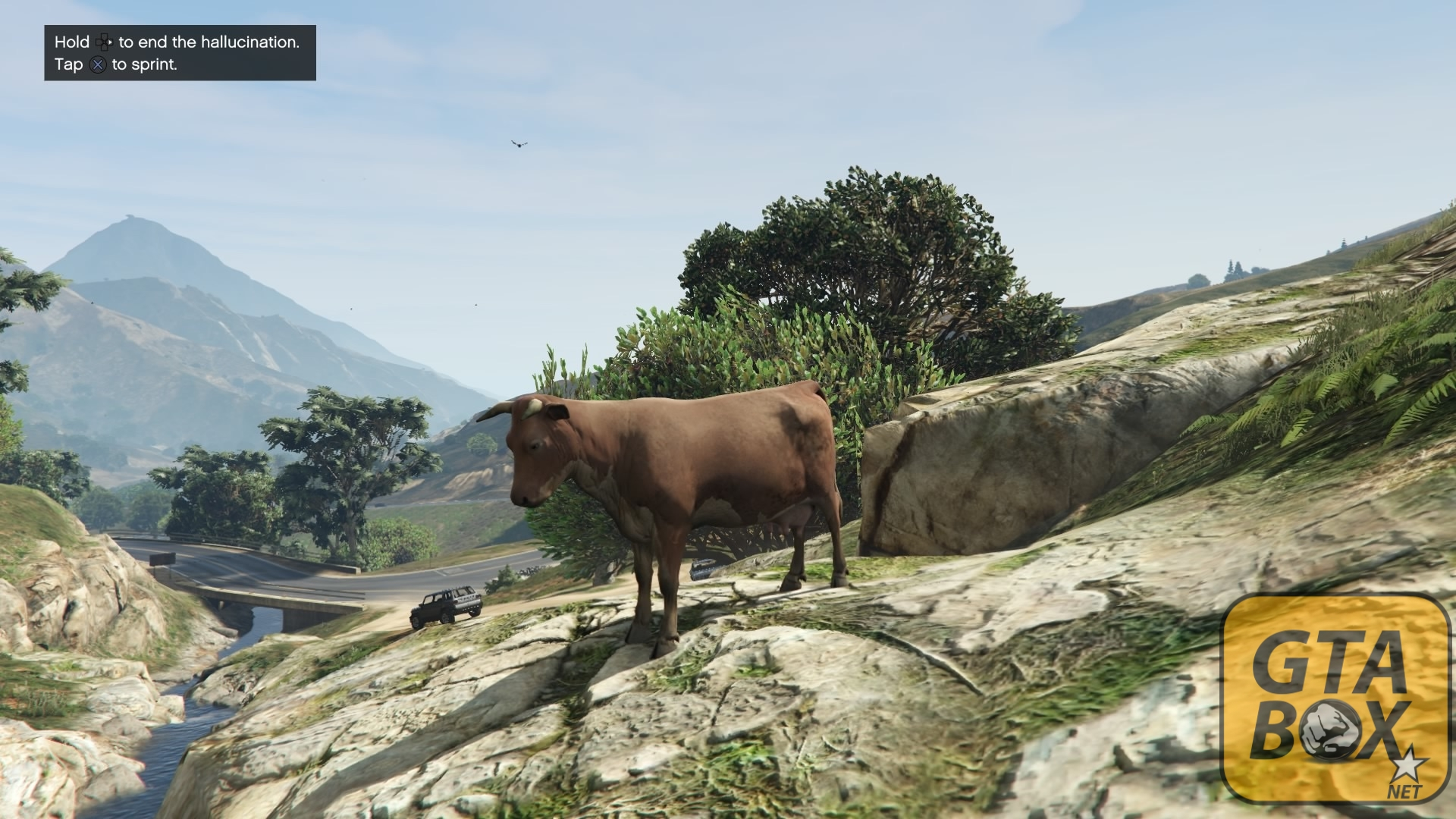 how to find bigfoot in gta 5 ps3