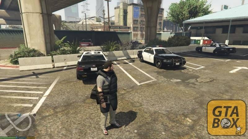 Автомобили полицейского патруля