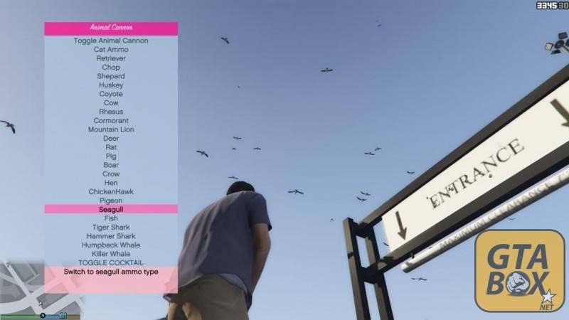 Стрельба птицами